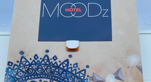 Fresque-du-moodz-hotel-vienne-Isere